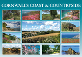 NEW Cornwall's Coast & Countryside CCAC